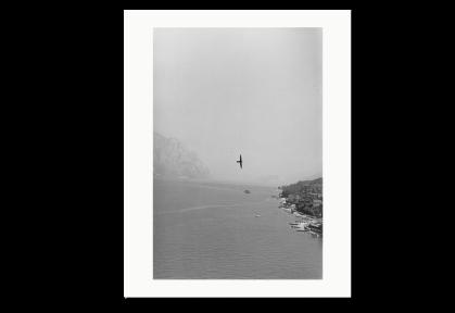 Des oiseaux - Bernard Plossu - limited edition